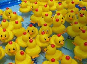 アヒルのおもちゃを使ったダックレース大人気…「合歓の郷」の屋外プール「アクアパーク」