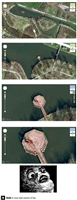 グーグルマップに写ってる死体wwwwwwwwwwwwwwww
