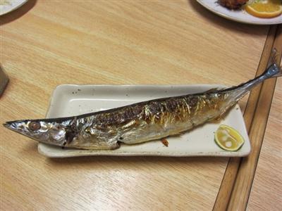 【経済】 サンマ1匹1600円以上、もう庶民の魚じゃない…北海道の海に異変