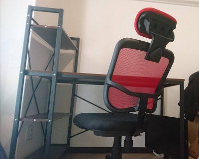 ワオ、机と椅子を組み立て終わる