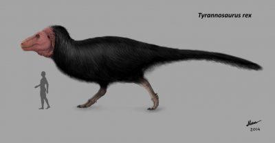 恐竜が毛ボーボーだったという事実www