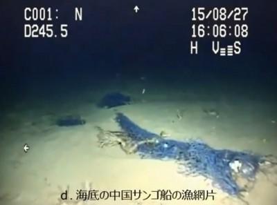 【社会】沖縄アカサンゴが激減、海底が「白い砂漠」 中国漁船による密漁被害は「小笠原と同様酷かった」